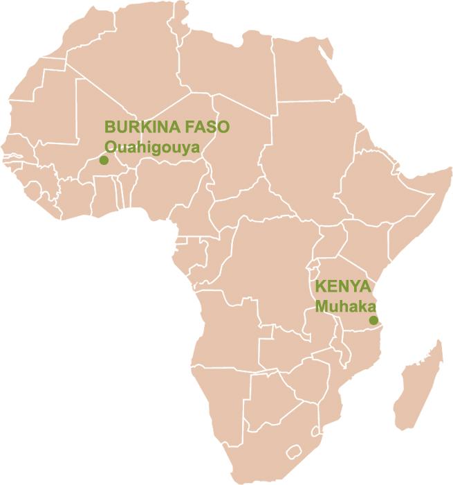 secteur10 projet au kenya